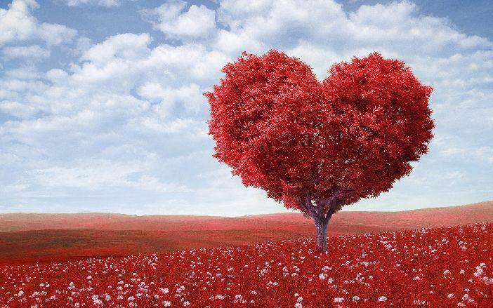Ljudi u uspješnim i kvalitetnim ljubavnim vezama nesvjesno rade ove dvije stvari