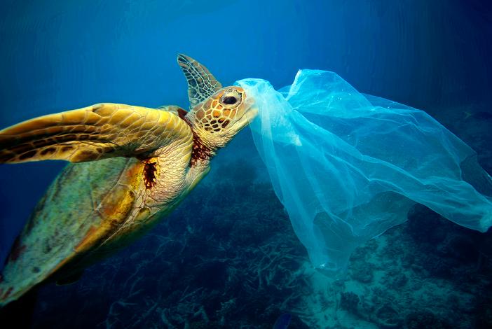 regulativa prepolovila domaću proizvodnju plastičnih vrećica
