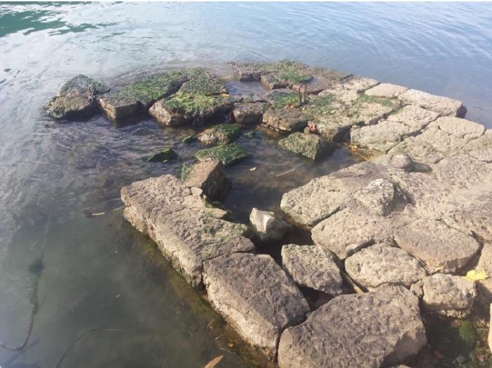 Uskoro rekonstrukcija rive u Rožatu